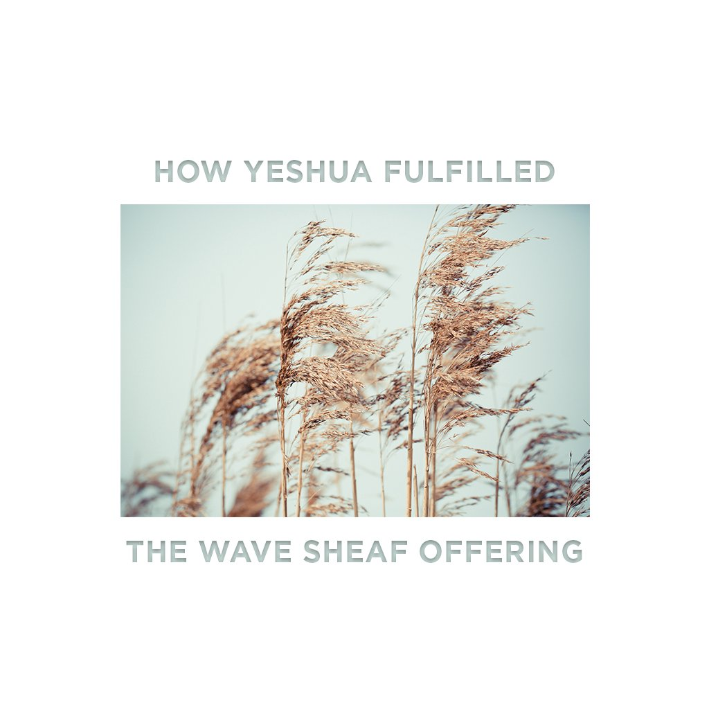 How Yeshua Fulfilled The Wave Sheaf Offering