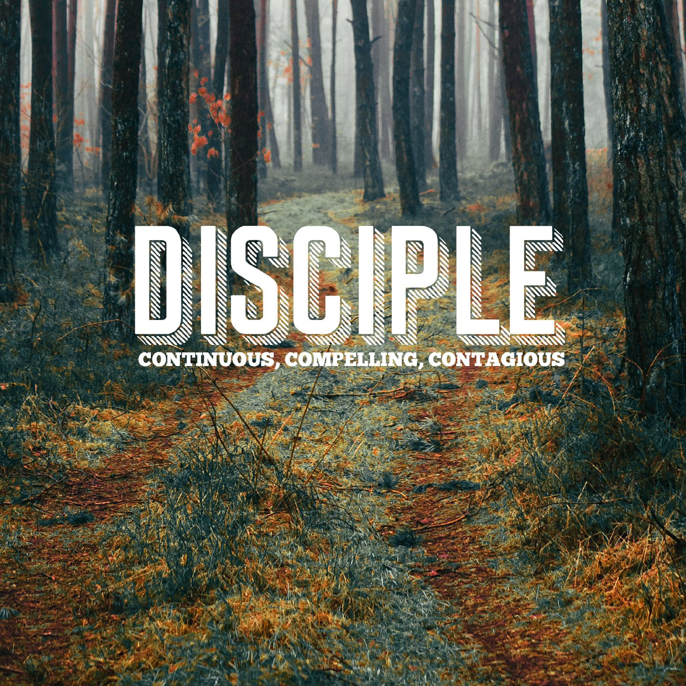 The Place to Begin - Becoming a Disciple