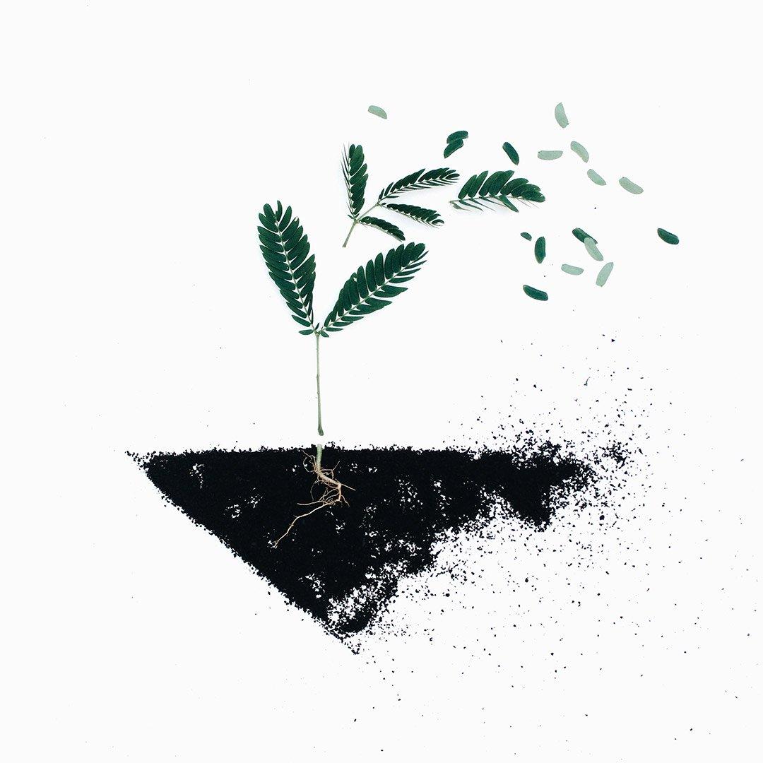 Good Soil & Signs of God's Grace
