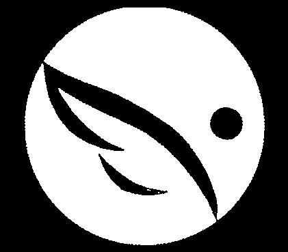 Celebration Church - TN Logo